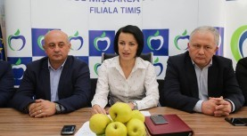 (P) Traiul românilor se joacă în Parlament! PMP Timiș luptă pentru o viață decentă