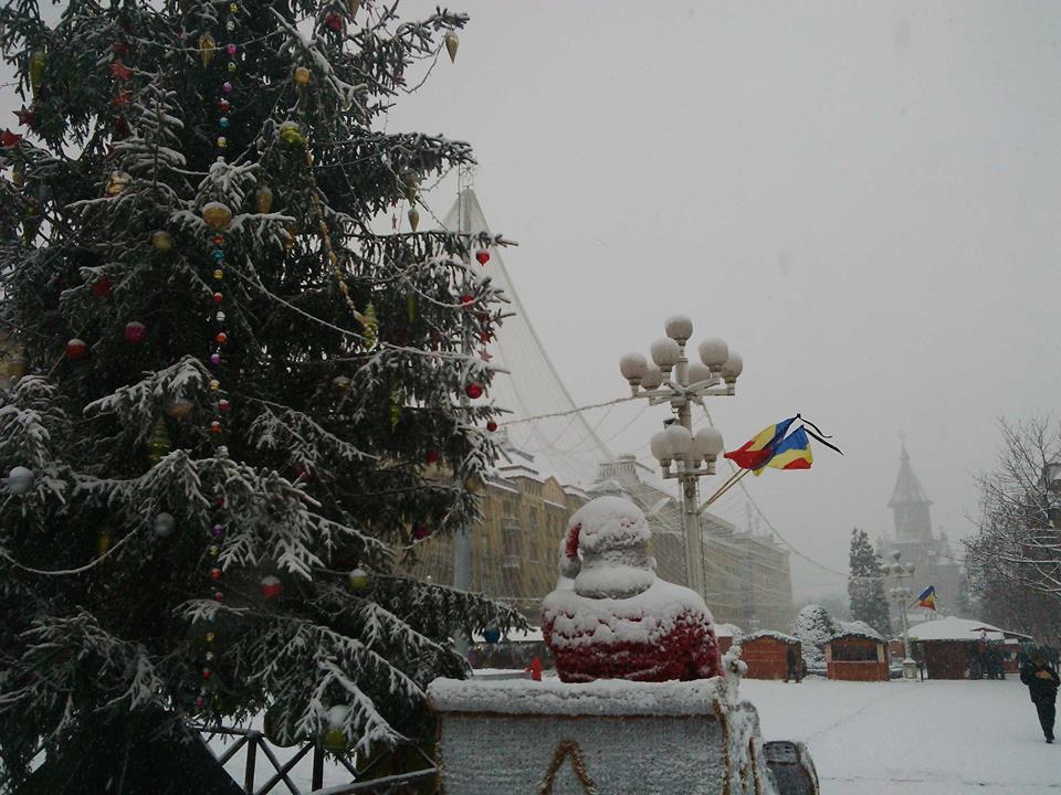 timisoara-iarna-1