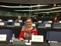 Juncker poate, Iohannis nu! Maria Grapini a primit răspuns la solicitările, privind  discriminarea copiilor non-austrieci