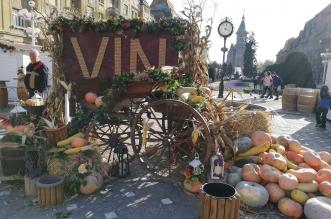 festival vinului