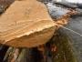 lemn taiat